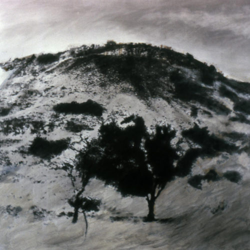 Enrique Zamudio - Cerro Espino